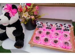 Urso Panda - foto -11